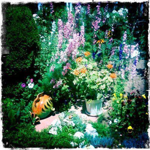 AnetaGenova_Garden9