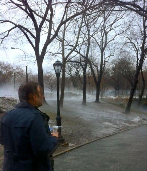 Foggy Central Park_2