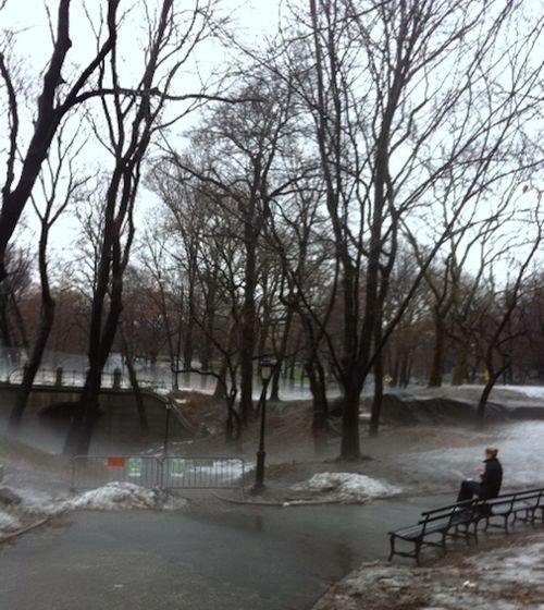 Foggy Central Park_3
