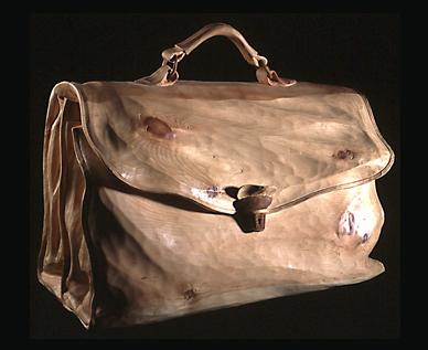 Doctor's Bag by Loris Marazzi