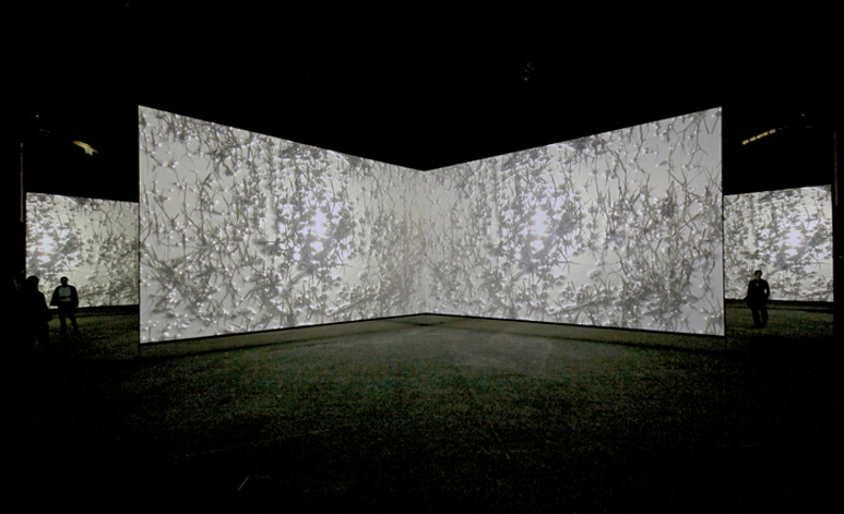 05_Doug-Aitken-Altered-Earth